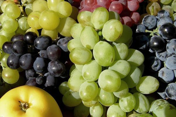 Druiven wit zonder pit